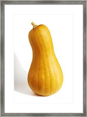 Pear Pumpkin Framed Print by Carlos Caetano