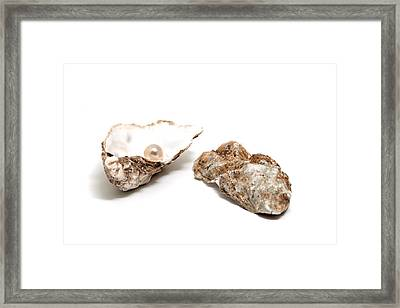 Pearl In Shell Framed Print by Ursula Alter