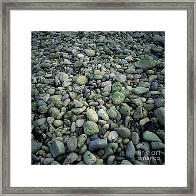 Pebbles Framed Print by Bernard Jaubert