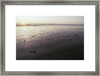 Pebbles Form Patterns On A Sandy Ocean Framed Print by Jason Edwards
