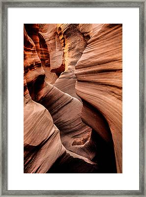Peek A Boo Framed Print by Chad Dutson