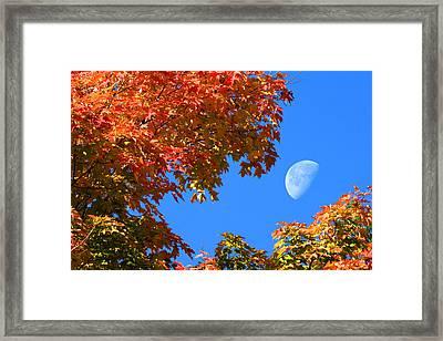 Peekaboo Moon Framed Print