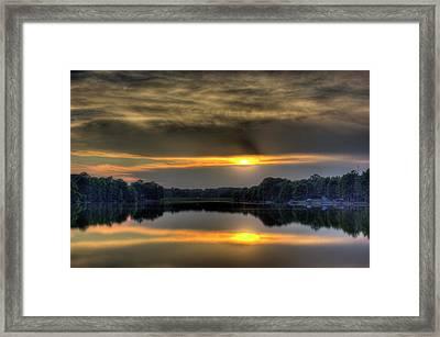 Peeking Through Framed Print by Barry Jones