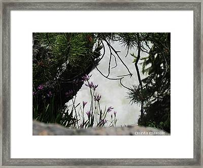 Peeking Waterfall Framed Print by Chasta Mariah