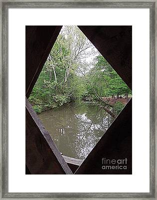 Framed Print featuring the photograph Peering Out by Renee Trenholm