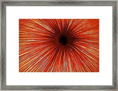 Peju Uluru Framed Print by Thomas Brown