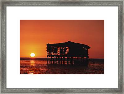 Pelican Bar At Sunset Framed Print