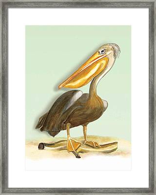Framed Print featuring the painting Pelican Bill by Anne Beverley-Stamps
