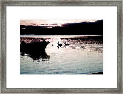 Framed Print featuring the photograph Pelican Boat. by Carole Hinding