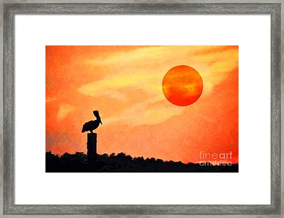 Framed Print featuring the photograph Pelican During Hot Day by Dan Friend