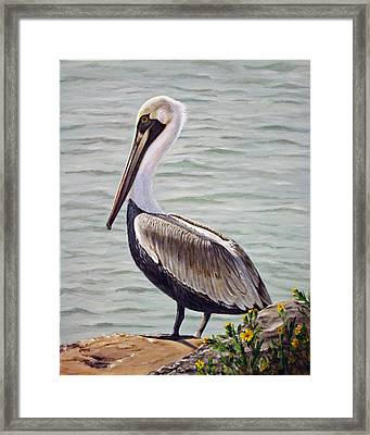Framed Print featuring the painting Pelican On The Waterway by Jimmie Bartlett
