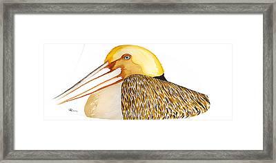 Pelican Two Framed Print by Alexandra  Sanders