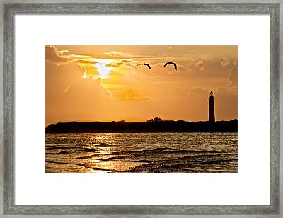 Pelicans Into The Sunset Framed Print