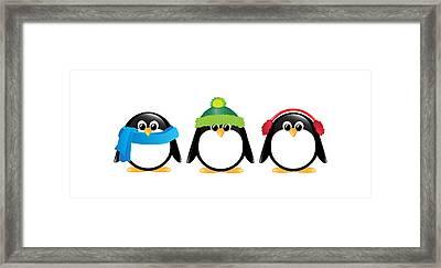 Penguins Isolated Framed Print