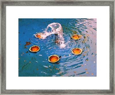 Penny Fountain Framed Print by Todd Sherlock