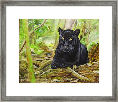 Pensive Panther Framed Print by Maureen Pisano