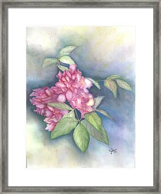 Peonies Framed Print by Elise Boam