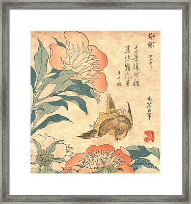 Peony And Canary Framed Print by Padre Art