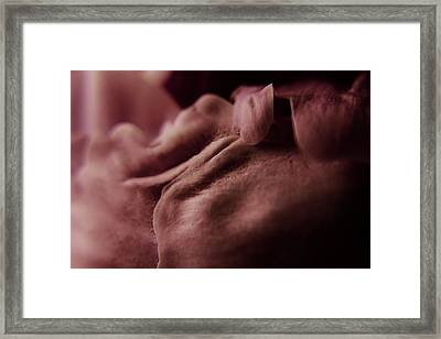 Peony Petals 2 Framed Print by Scott Hovind