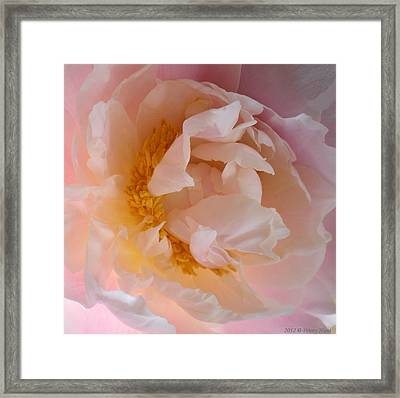 Framed Print featuring the photograph Peony Pink by Penny Hunt