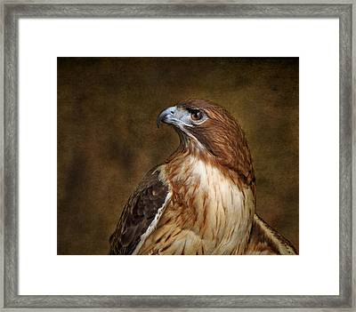 Pepe With Texture Framed Print