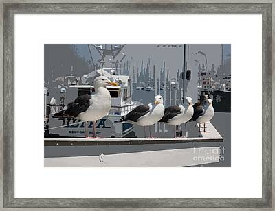 Perched Seagulls Framed Print