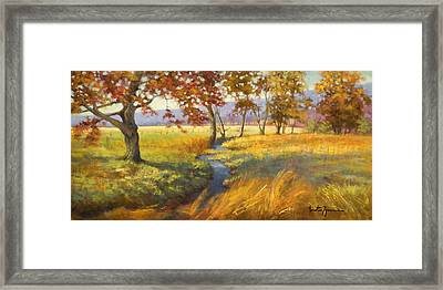 Perfect Afternoon Framed Print