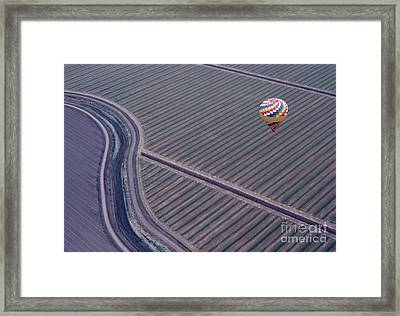 Perfect Proposition Framed Print by Terry Toland