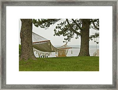 Perfect Spot Framed Print by Paul Mangold