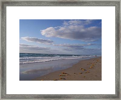 Framed Print featuring the photograph Perfection by Sheila Silverstein