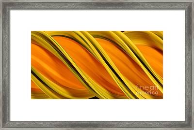 Peripheral Streak Image Of Squash Framed Print by Ted Kinsman