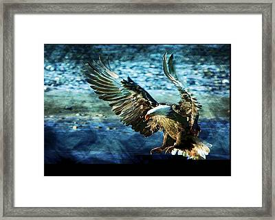 Framed Print featuring the digital art Perserverance by Carrie OBrien Sibley