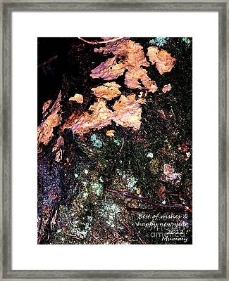 Framed Print featuring the photograph Perso Woodoh by Cazyk Photography