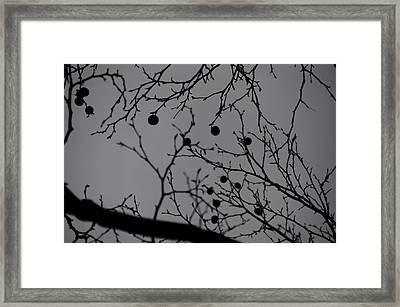 Perspective Framed Print by Marcel Krasner