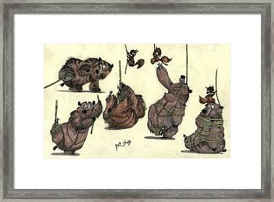 Pet Shop - Bears Framed Print