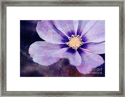 Petaline - 06bt04b Framed Print by Variance Collections