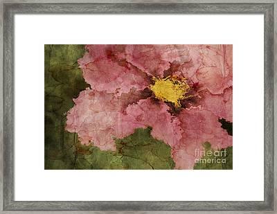 Petaline - Ar01bt05 Framed Print
