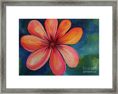 Petals Framed Print by Carolyn Weir