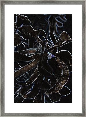 Petals To Pass Framed Print by Travis Crockart