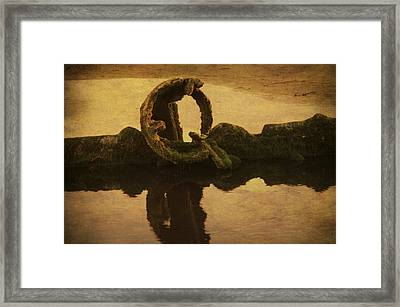 Peter Iredale Framed Print by Terrie Taylor