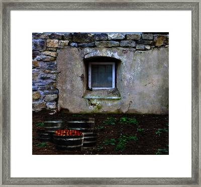 Petite Harvest Framed Print by Cecil Fuselier