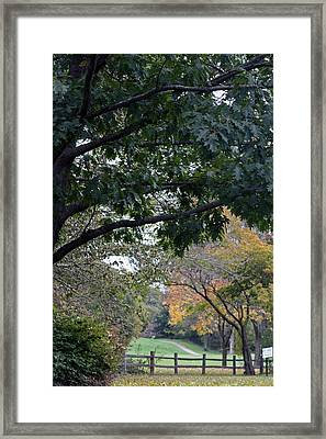 Petrifying Springs Golf Course Framed Print by Kay Novy