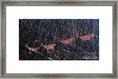 Petroglyphs1 Framed Print