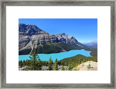 Peyto Lake Alberta Canada Framed Print