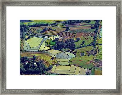 Philippine Patchwork Framed Print by Craig Wood
