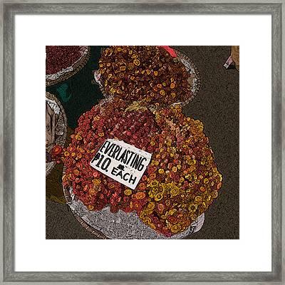 Philippines 3451 Everlasting Framed Print