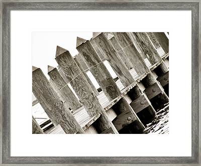 Phillies Dock Halladay Framed Print by Trish Tritz