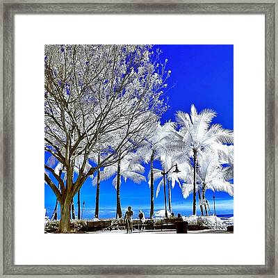 #photographer #instapassport #instamood Framed Print