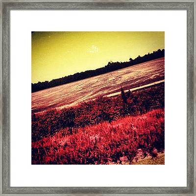 Pic While Driving Framed Print