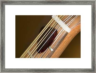 Pick Framed Print by C Ribet